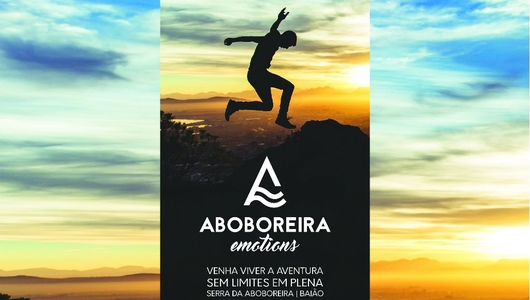 Aboboreira emotions 1 1 530 300