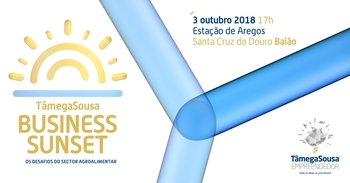 Business sunset baiao 1 350 9999